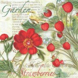 Strawberry Garden いちごと小鳥 苺 ストロベリー 1枚 バラ売り 33cm ペーパーナプキン デコパージュ Nouveau