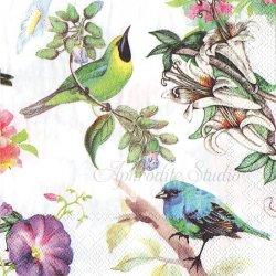 25cm BIRD SONG カラフルな小鳥 1枚 バラ売り ペーパーナプキン デコパージュ用 MICHEL DESIGN WORKS