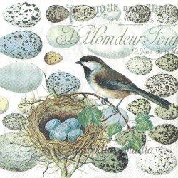 25cm NEST & EGGS 小鳥の巣と卵 1枚 バラ売り ペーパーナプキン デコパージュ用 MICHEL DESIGN WORKS