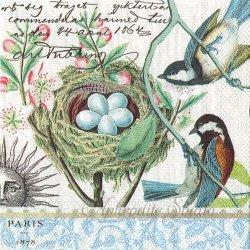 25cm BIRD NEST 小鳥と卵のある巣 1枚 バラ売り ペーパーナプキン デコパージュ用 MICHEL DESIGN WORKS