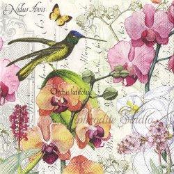 25cm ORCHIDS IN BLOOM 蘭と小鳥 1枚 バラ売り ペーパーナプキン デコパージュ用 MICHEL DESIGN WORKS