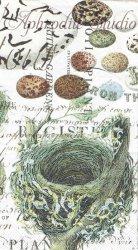 33x40cm NEST & EGGS 小鳥の巣と卵 1枚 バラ売り ペーパーナプキン デコパージュ MICHEL DESIGN WORKS