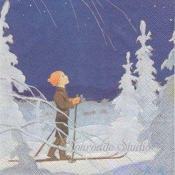 北欧 ハヴィ Rudolf Koivu 真冬の流れ星 1枚 バラ売り 33cm ペーパーナプキン デコパージュ havi Suomen Kerta