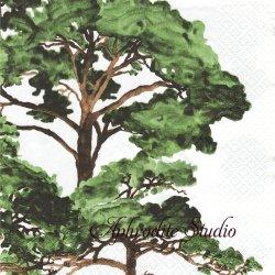 北欧 ハヴィxサムイ HONGISTO 緑の木 Samuji 1枚 バラ売り 33cm ペーパーナプキン デコパージュ havi Suomen Kerta
