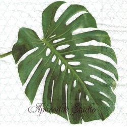 Monstera グリーン モンステラの葉っぱ 1枚 バラ売り 33cm ペーパーナプキン デコパージュ用 Paper+Design