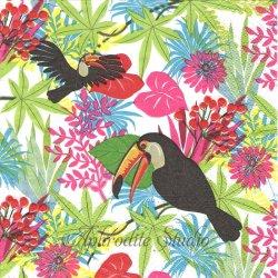 廃番 Tropical bird 南国の鳥 トロピカル 1枚 バラ売り 33cm ペーパーナプキン デコパージュ用 Paw