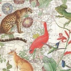 EXOTIC WORLD エキゾチックな動物柄 地図 1枚 バラ売り 33cm ペーパーナプキン デコパージュ Ihr