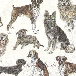 MY FAVORITE DOG お気に入りの犬たち 1枚 バラ売り 33cm ペーパーナプキン デコパージュ Ihr