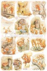 クロモス 廃盤品 ビアトリクス・ポター りすのナトキンのおはなし  1枚 【1785】 ステッカー シール イギリス製 Beatrix Potter ピーターラビット