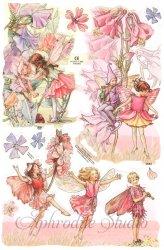 クロモス 廃盤品 フラワーフェアリーズ ピンクの花と妖精 シシリー・メアリー・バーカー  1枚 【2042】 ステッカー シール イギリス製 Flower Fairies