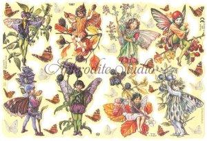 クロモス 廃盤品 フラワーフェアリーズ パープルの花と妖精 シシリー・メアリー・バーカー  1枚 【1987】 ステッカー シール イギリス製 Flower Fairies
