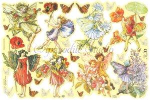 クロモス 廃盤品 フラワーフェアリーズ 花と妖精 シシリー・メアリー・バーカー  1枚 【1988】 ステッカー シール イギリス製 Flower Fairies