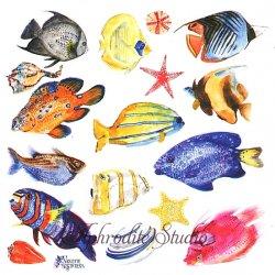 【2018年新柄入荷】カラフル熱帯魚の夏ステッカー 1シート ヴィクトリアン シール ラベル ビクトリアン Victorian ラッピング