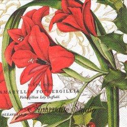 25cm CHRISTMAS TIME アマリリス クリスマスの紅い花 1枚 バラ売り ペーパーナプキン デコパージュ用 MICHEL DESIGN WORKS