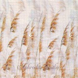 Nature Winds 秋のススキの穂 LaTerzi Design 1枚 バラ売り 33cm ペーパーナプキン デコパージュ用 紙ナプキン ppd
