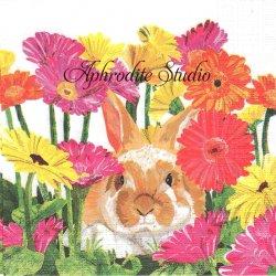 Gerbera Bunny ガーベラと兎 うさぎ Two Can Art 1枚 バラ売り 33cm ペーパーナプキン デコパージュ用 紙ナプキン ppd