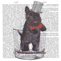 新聞シリーズ Lord Andrew 蝶ネクタイの黒犬 Fab Funky 1枚 バラ売り 33cm ペーパーナプキン デコパージュ用 紙ナプキン ppd