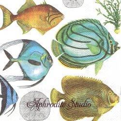 25cm 廃盤 TROPICAL FISH トロピカル・フィッシュ 熱帯魚 1枚 バラ売り ペーパーナプキン デコパージュ用 MICHEL DESIGN WORKS