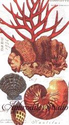 33x40cm 廃番 SHELLS オレンジ色の貝殻や赤珊瑚 1枚 バラ売り ペーパーナプキン デコパージュ MICHEL DESIGN WORKS