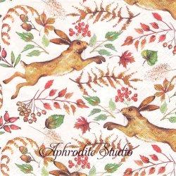 ローラ・アシュレイ HASE 秋の木の実と兎 バニー うさぎ ラビット 1枚 バラ売り 33cm ペーパーナプキン LAURA ASHLEY