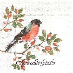 ローラ・アシュレイ BRITISCHE  VOGEL 秋の木の実と小鳥 1枚 バラ売り 33cm ペーパーナプキン LAURA ASHLEY