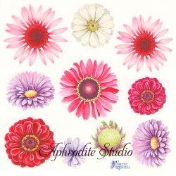 【2018年新柄入荷】ガーベラの花のステッカー 1シート ヴィクトリアン シール ラベル ビクトリアン Victorian ラッピング