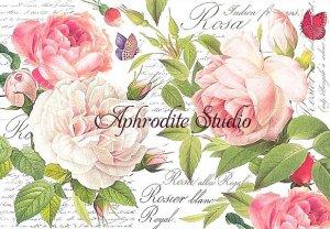 48X33cm 商用販売可能 スタンペリア Vintage Rose ヴィンテージ・ローズ 薔薇 デコパージュシート 1枚 和紙 ライスペーパー Stamperia