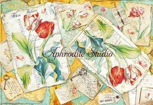 48X33cm 商用販売可能 スタンペリア Tulips チューリップのカード デコパージュシート 1枚 和紙 ライスペーパー Stamperia