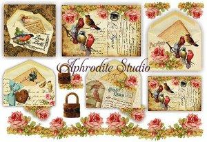 48X33cm 商用販売可能 スタンペリア Birds on Postcards 小鳥のポストカード デコパージュシート 1枚 和紙 ライスペーパー Stamperia