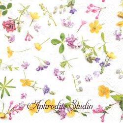 Scattered flowers 可憐な一輪の野花 1枚 バラ売り 33cm ペーパーナプキン Paper+Design