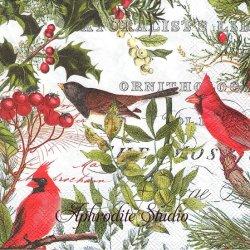 WINTER'S TALE 小鳥と赤い実 クリスマス 1枚 バラ売り 33cm ペーパーナプキン デコパージュ MICHEL DESIGN WORKS