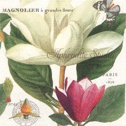 MAGNOLIA マグノリアの花 1枚 バラ売り 33cm ペーパーナプキン デコパージュ MICHEL DESIGN WORKS
