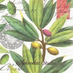 OLIVE GROVE オリーブの木と実 1枚 バラ売り 33cm ペーパーナプキン デコパージュ MICHEL DESIGN WORKS