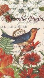 33x40cm WILDFLOWER MEADOW 紅い花と小鳥 1枚 バラ売り ペーパーナプキン デコパージュ MICHEL DESIGN WORKS