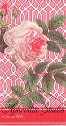 33x42cm CASKATA STUDIO TRELLIS ROSE 薔薇とトレリス 1枚 バラ売り ペーパーナプキン Ihr