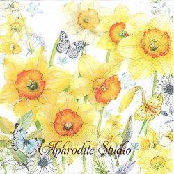 CLASSIC DAFFOILS 黄色い水仙の花 1枚 バラ売り 33cm ペーパーナプキン Ambiente