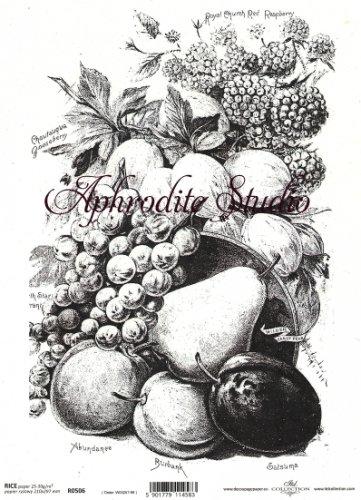 商用販売可能 モノクロ フルーツ 果物 デコパージュシート 1枚 和紙 ライスペーパー ITD Collection