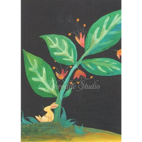 アニタ・ジェラーム メッセージカード【MAGIC BEAN】 グリーティングカード Anita Jeram