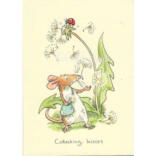 アニタ・ジェラーム メッセージカード【COLLECTING KISSES】 グリーティングカード Anita Jeram