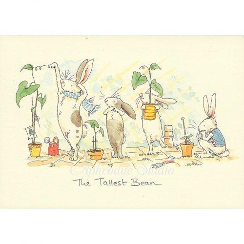 アニタ・ジェラーム メッセージカード【THE TALLEST BEAN】 グリーティングカード Anita Jeram