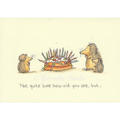 アニタ・ジェラーム メッセージカード【NOT SURE HOW OLD ARE】 グリーティングカード Anita Jeram