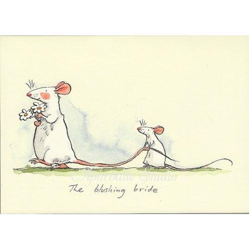 アニタ・ジェラーム メッセージカード【THE BRUSHING BRIDE】 グリーティングカード Anita Jeram