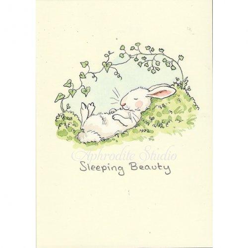 アニタ・ジェラーム メッセージカード【SLEEPING BEAUTY】 グリーティングカード Anita Jeram