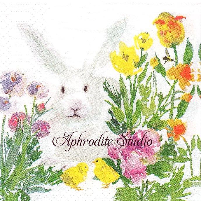 25cm Oh, so Bunny! 花畑の兎 うさぎ イースター 1枚 バラ売り ペーパーナプキン ppd
