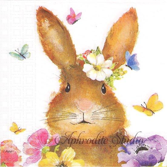 1パック20枚 廃盤 Easter Beauty 可愛いおめかし兎のイースター ラビット バニー Carola Pabst 33cm ペーパーナプキン ppd
