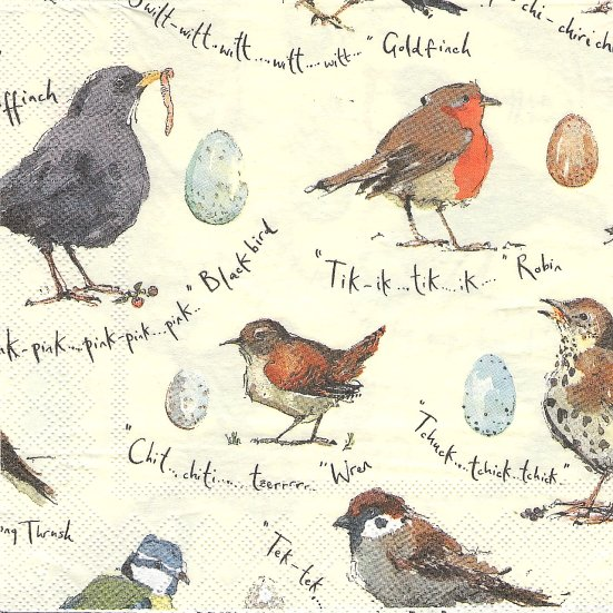 1パック20枚 小鳥の唄 マデリン・フロイド Madeleine Floyd 33cm ペーパーナプキン Ulster Weavers