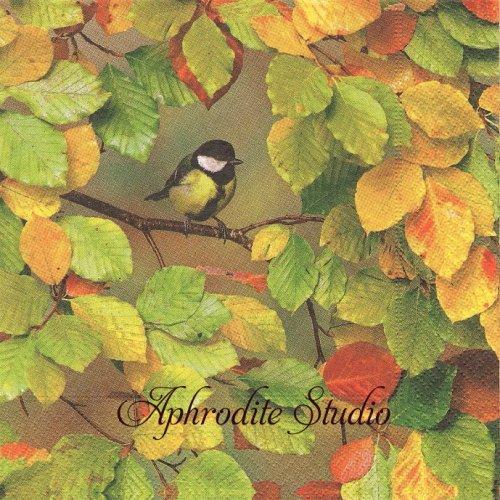 Fall is here リーフと小鳥 葉っぱ 風景 1枚 バラ売り 33cm ペーパーナプキン Paper+Design