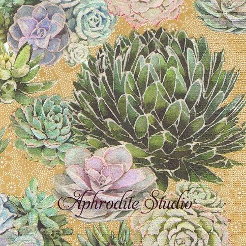 Succulents 多肉植物 1枚 バラ売り 33cm ペーパーナプキン ppd