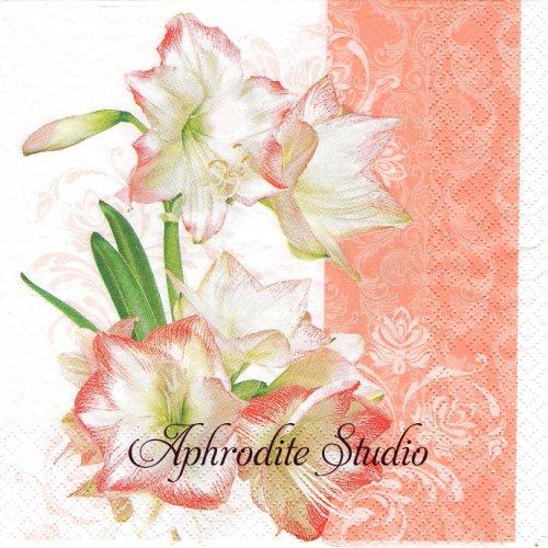 Lovely Amaryllis 綺麗なアマリリス 花 1枚 バラ売り 33cm ペーパーナプキン HOME FASHION