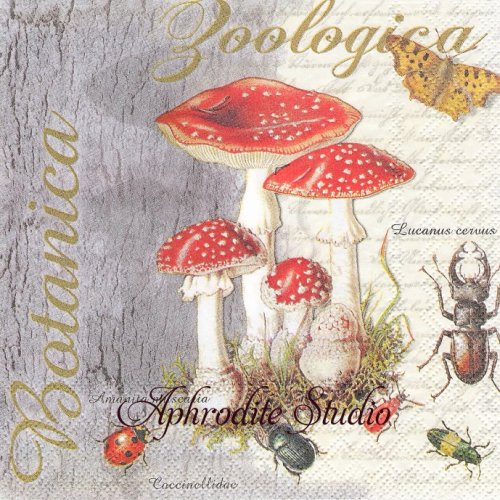 FLY AGARIC AND BEETLE きのこと昆虫 1枚 バラ売り 33cm ペーパーナプキン Ambiente